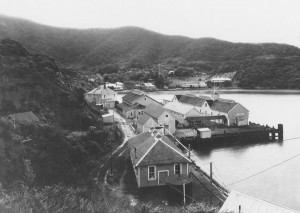 Hospital Cove, Quarantine Station (aka Ayala Cove), circa 1920