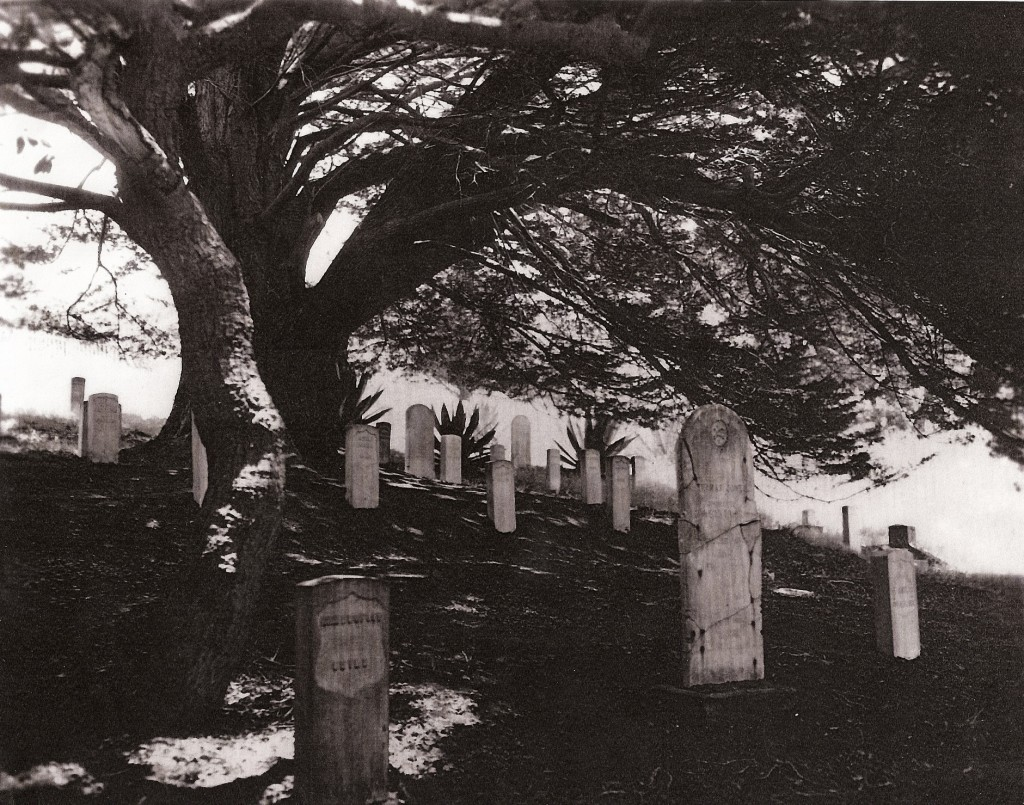 Angel Island - Cemetery